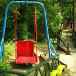 Wheelchair Swing